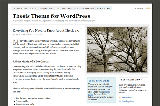 wordpress_thesis_theme_1